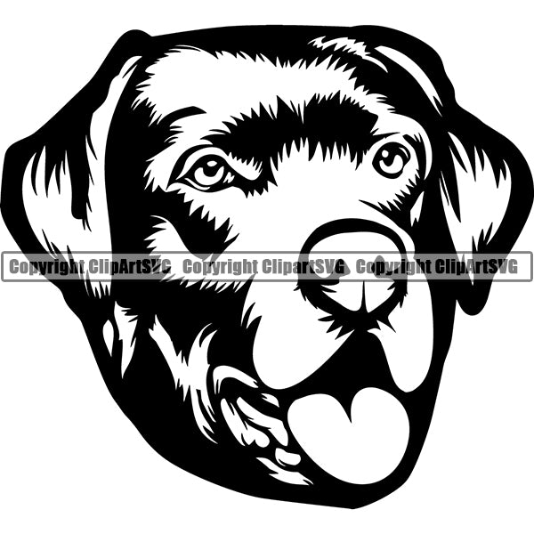 Labrador Retriever Dog Breed Head Face ClipArt SVG 008