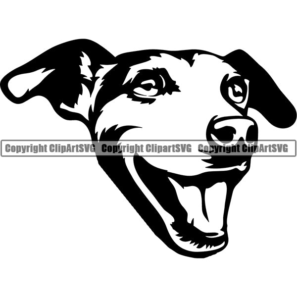 Jack Russell Terrier Dog Breed Head Face ClipArt SVG 012