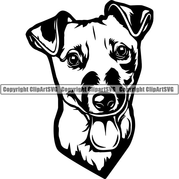 Jack Russell Terrier Dog Breed Head Face ClipArt SVG 009