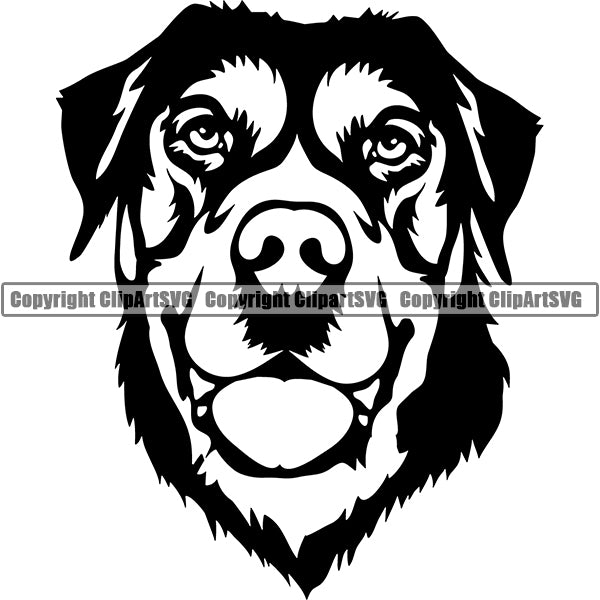 Swiss Mountain Dog Breed Head Face ClipArt SVG 001
