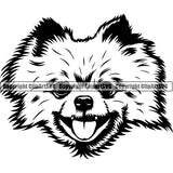 Pomeranian Dog Breed Head Face ClipArt SVG 007