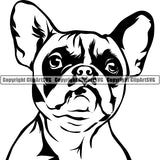 French Bulldog Dog Breed Head Face ClipArt SVG 004