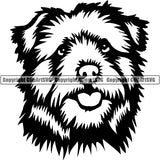 Norfolk Terrier Dog Breed Head Face ClipArt SVG 001