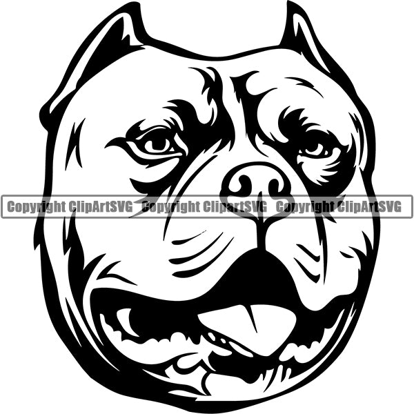 Pit Bull Dog Breed Head Face ClipArt SVG 023