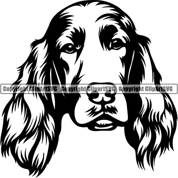 Irish Setter Dog Breed Head Face ClipArt SVG 001