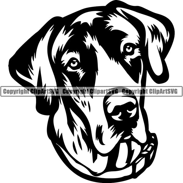 Great Dane Dog Breed Head Face ClipArt SVG 004