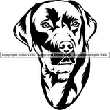 Labrador Retriever Dog Breed Head Face ClipArt SVG 006
