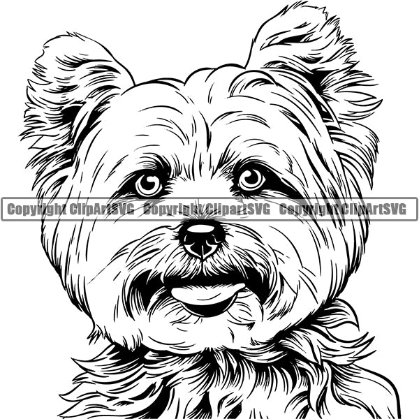 Yorkshire Terrier Dog Breed Head Face ClipArt SVG 004