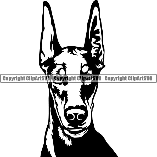Animal Dog Doberman Dog Breed Head Face ClipArt SVG 001