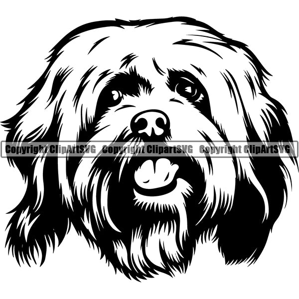 Havanese Dog Breed Head Face ClipArt SVG 002