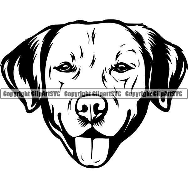 Labador Retriever Dog Breed Head Face ClipArt SVG 002