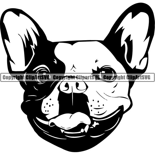 French Bulldog Dog Breed Head Face ClipArt SVG 005