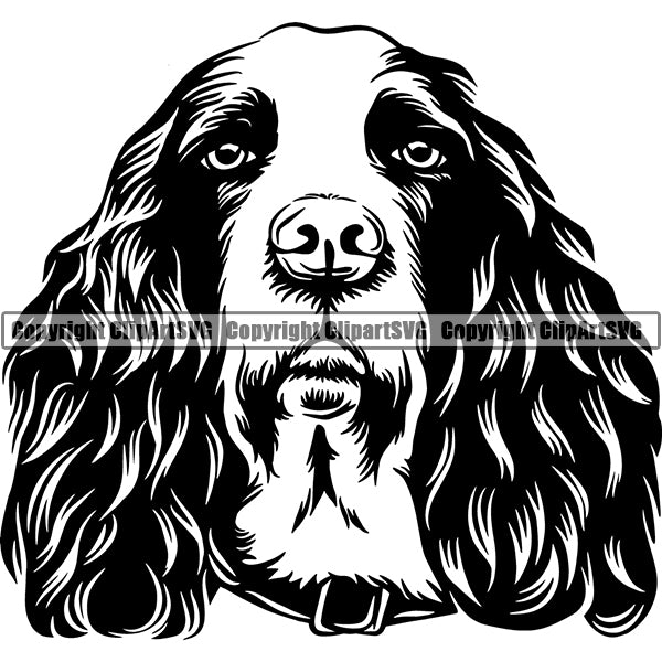 English Springer Spaniel Dog Breed Head Face ClipArt SVG 003