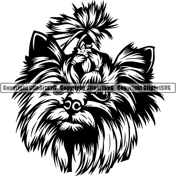 Yorkshire Terrier Dog Breed Head Face ClipArt SVG 006