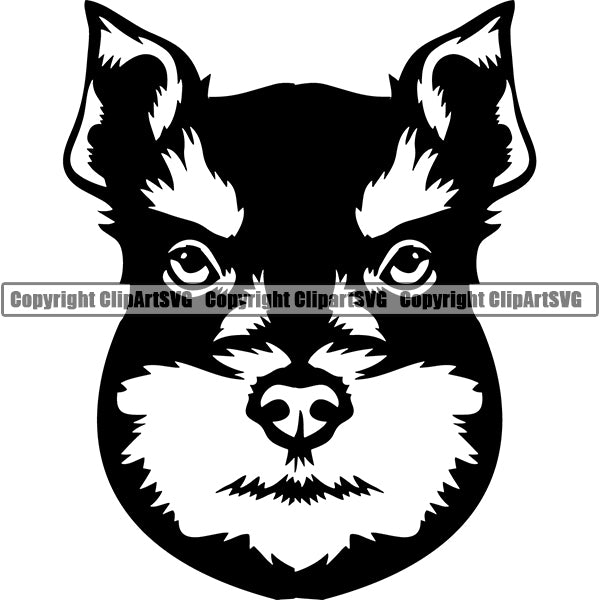 Schnauzer Dog Breed Head Face ClipArt SVG 003