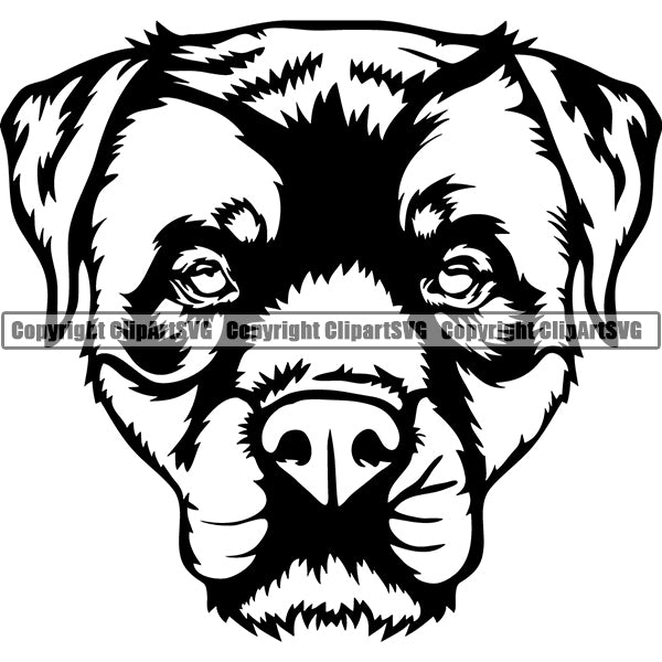 Rottweiler Dog Breed Head Face ClipArt SVG 009