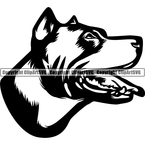 Pit Bull Dog Breed Head Face ClipArt SVG 008