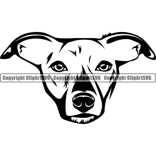 West Highland White Terrier Dog Breed Head Face ClipArt SVG 004
