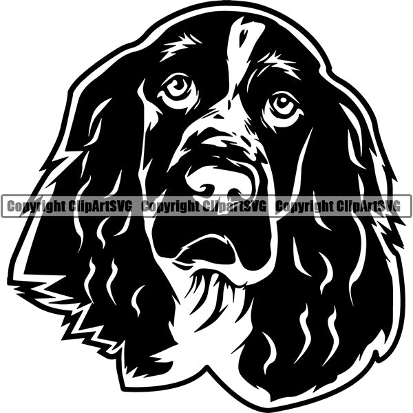 English Springer Spaniel Dog Breed Head Face ClipArt SVG 005