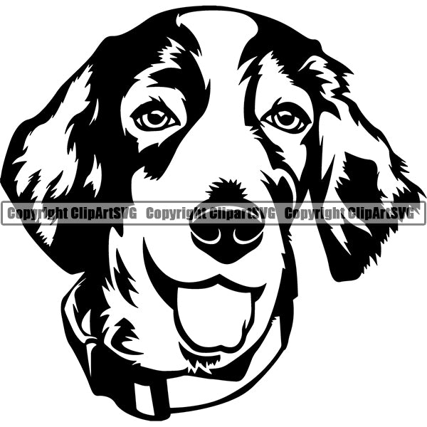 Welsh Springer Spaniel Dog Breed Head Face ClipArt SVG 001