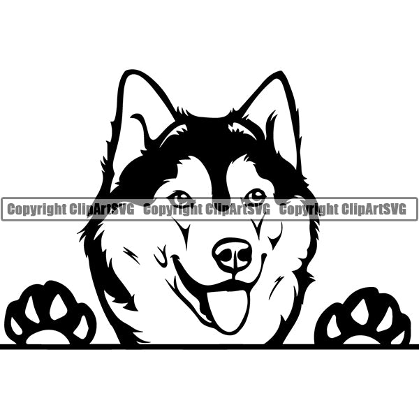 Siberian Husky Peeking Dog Breed ClipArt SVG 005
