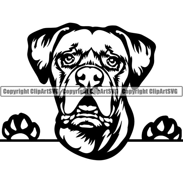 Boxer Peeking Dog Breed Clipart SVG 005