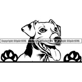 Jack Russell Terrier Peeking Dog Breed ClipArt SVG 007