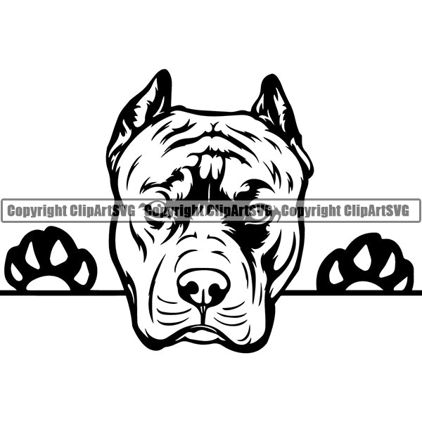 Pit Bull Peeking Dog Breed ClipArt SVG 016