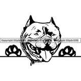 Pit Bull Peeking Dog Breed ClipArt SVG 014
