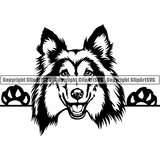 Shetland Sheepdog Peeking Dog Breed ClipArt SVG 001
