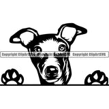 Greyhound Peeking Dog Breed ClipArt SVG