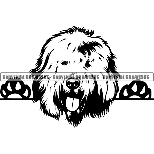 Old English Sheepdog Peeking Dog Breed ClipArt SVG