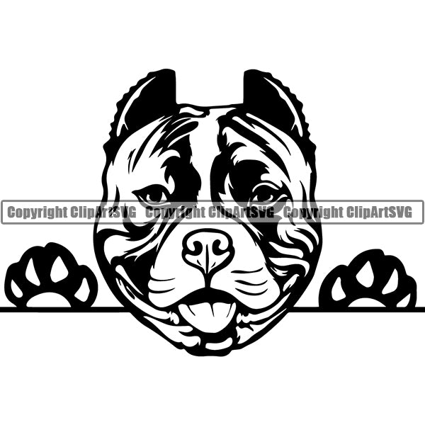 Pit Bull Peeking Dog Breed ClipArt SVG 015