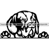 Pachon Navarro Peeking Dog Breed ClipArt SVG