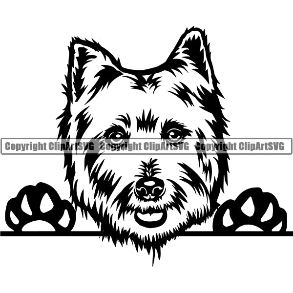 West Highland White Terrier Peeking Dog Breed ClipArt SVG 002