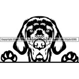 English Setter Peeking Dog Breed ClipArt SVG 002