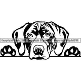 German Shorthaired Pointer Peeking Dog Breed ClipArt SVG 002