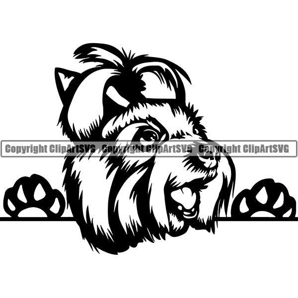 Yorkshire Terrier Peeking Dog Breed ClipArt SVG 005