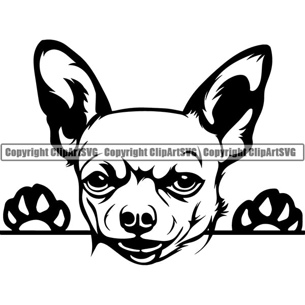 Chihuahua Peeking Dog Breed Clipart SVG 001