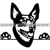 Australian Kelpie Peeking Dog Breed Clipart SVG 002