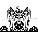 Yorkshire Terrier Peeking Dog Breed ClipArt SVG 014