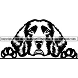 English Springer Spaniel Peeking Dog Breed ClipArt SVG 007