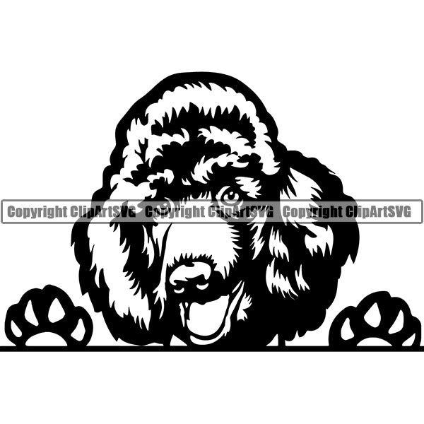 Poodle Peeking Dog Breed ClipArt SVG 009