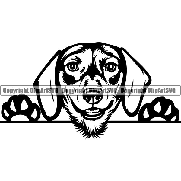 Dachshund Peeking Dog Breed Clipart SVG 013