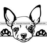 Chihuahua Peeking Dog Breed Clipart SVG 002