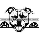 Pit Bull Peeking Dog Breed ClipArt SVG 009