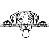 Rhodesian Ridgeback Peeking Dog Breed ClipArt SVG 004