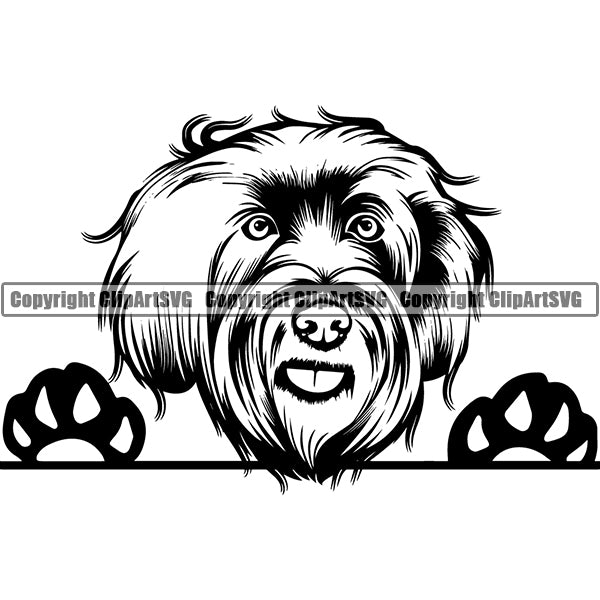 Labradoodle Peeking Dog Breed ClipArt SVG 002