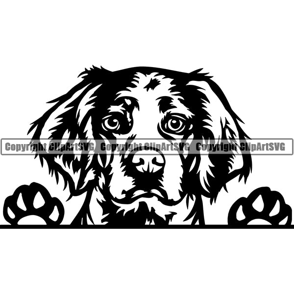Brittany Spaniel Breed Head Face Clipart SVG 004