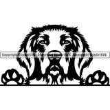 Golden Retriever Peeking Dog Breed ClipArt SVG 003